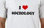 El futuro de la teoría social (o la sociología después de Facebook).